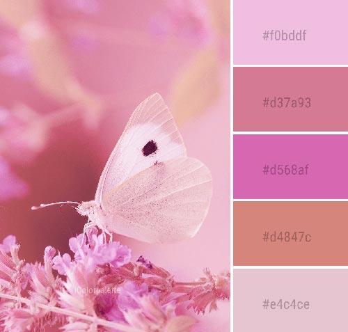 اصول رنگشناسی در طراحی وبسایت