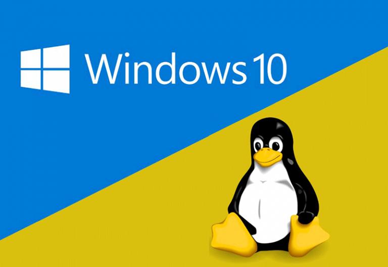 تفاوت هاست لینوکس و هاست ویندوز چیست؟