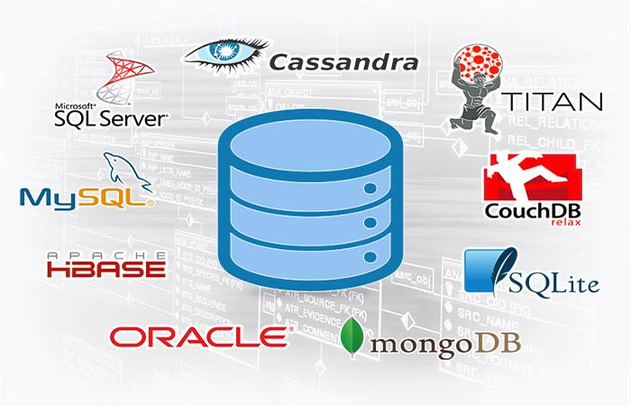 انواع سیستم مدیریت پایگاه داده (DBMS)